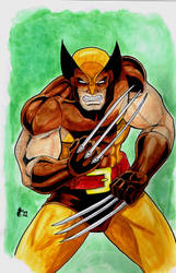 Water Color Wolverine by Jrascoe