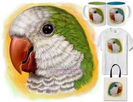 Quaker parrot by emmil