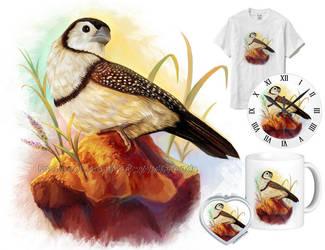Owl finch by emmil