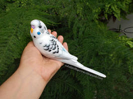 Budgie real size clay sculpture by emmil