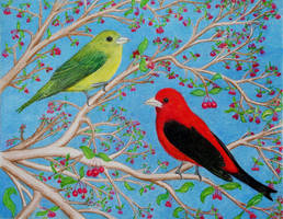 Scarlet Tanagers by PMucks