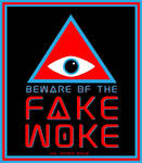 BEWARE THE FAKE WOKE by HalHefnerART