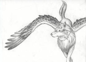 Winged Wolf by Tofu123