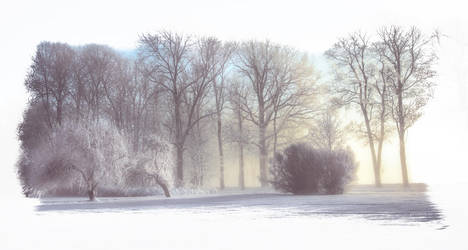 Garden of Winther by edsh