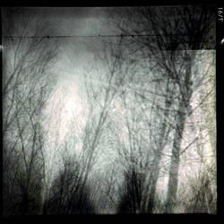 932 - anthem of the sun by Pecuchet