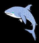 Whale Shark by MischievousPooka