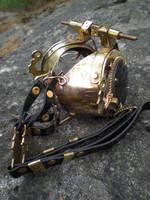 Bug goggles by fairyfrog
