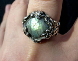 Equinox ring - front by fairyfrog