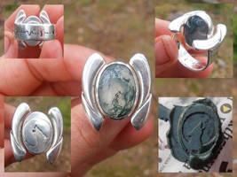Werewolf ring with hidden seal by fairyfrog