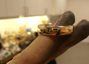 Gold ring Workshop Portrait by fairyfrog