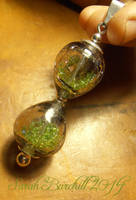 Time Pod in lampworked glass by fairyfrog