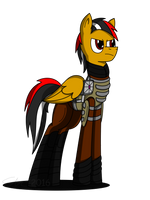 Commission: Merit Cross by Dronehunter19
