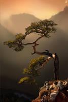 Tree environment study! by JordyLakiere