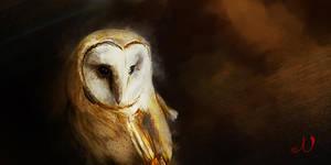 Owl by NickRileyArt