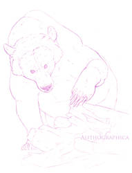 AMNH Grizzly Sketches by Alithographica