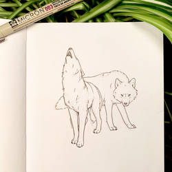 Inktober 28: Wolves by Alithographica