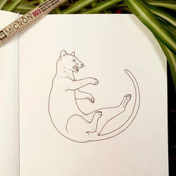 Inktober 29: Fossa by Alithographica