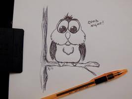 Little owl - Goodnight :) by fabri360