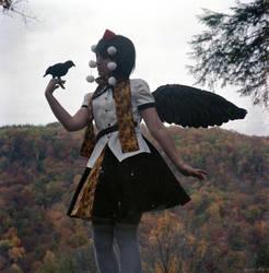 Aya Shameimaru Set 4 by timebombtimmy