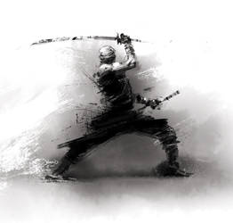 Rough Ninja by hamex