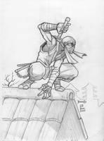 Ninja by hamex