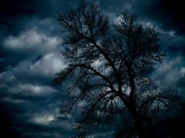 Stormy Skies by DafoeofLenin