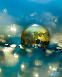 Twinkle twinkle by DafoeofLenin