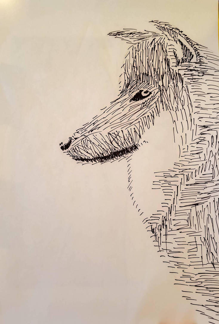 Wolf by Asmathues
