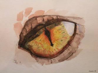 Smaugs Eye by Anouk-Jill