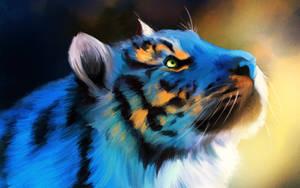 Tiger Blue by BoyGTO