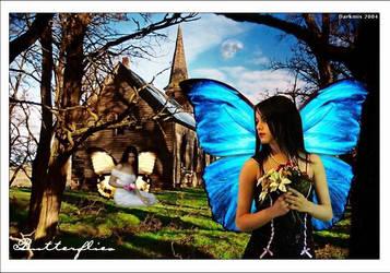 Butterflies by Darkmis