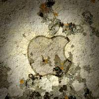 iPad Apple Wallpaper Moss by thekingofthevikings
