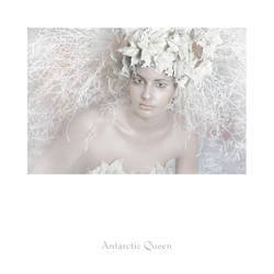 Antarctic Queen I by eraserell