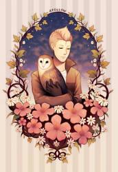 Apollow, owl of dusk. by longestdistance
