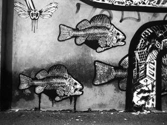 wall painting bergamo by orticanoodles
