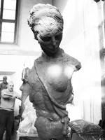 bust by stefanestoroski