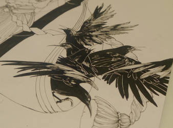 crows by ASingleGiraffe