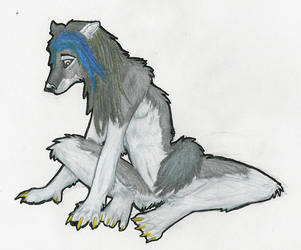 wolfenashes first trade pic by ketrafc