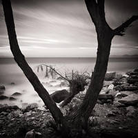 Still Dreaming by kpavlis