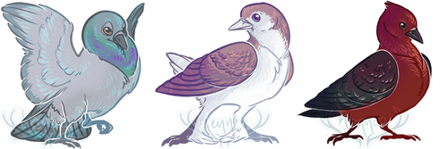 Fancy Pigeons by pidgepudge