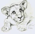 lion cub sketch by kique-ass