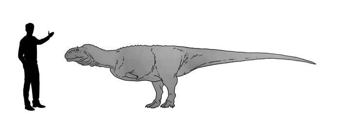 Majungasaurus test drawing by dibrangosaurus