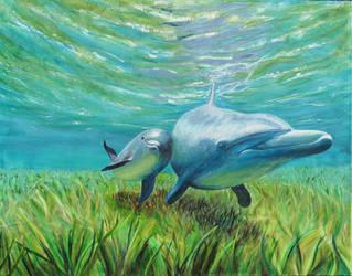 zwei delfine by uwelt