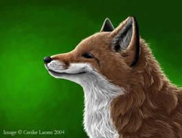 Fox by tarangryph