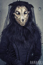 Dark Widow by tarangryph
