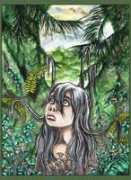 68 .: Rainforest :. by anachsunamon