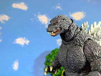 Custom Sh Birth Goji eye repaint 4 by godzilla154