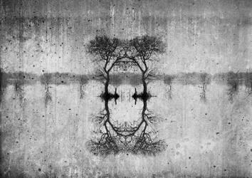 Self Reflection 2 by KatieMaddison