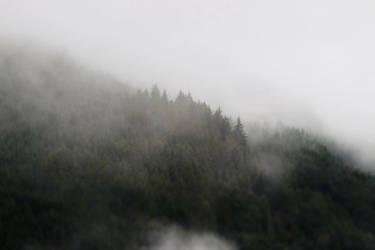 Hidden in the Mist by XLittleDoveX
