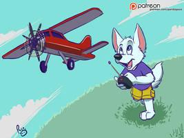 RC Plane by pandapaco